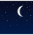 background night sky vector image