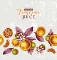 background with hand drawn tangerine vector image vector image