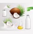 coconut milk products set vector image