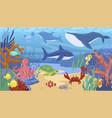 colorful cartoon sea animals underwater panorama vector image vector image