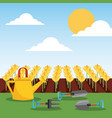 field of flowers watering can and tools vector image