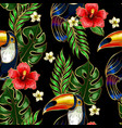 seamless pattern of toucan embroidery vector image vector image