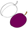 set plum painted with black lines and painted vector image vector image