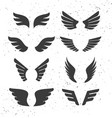 black wings set vector image