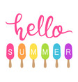 hello summer text with colorful icecream popsicles vector image