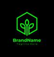 hexagon green nature logo ecology logo vector image