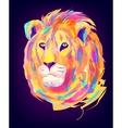 the cute colored lion head vector image vector image