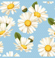 camomile and polka dot seamless background vector image