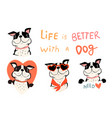 french bulldog or pug dog lovers collection vector image