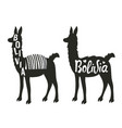 funny set with llama silhouette vector image