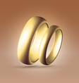 Two parallel golden rings vector image vector image