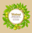 walnut frame vector image vector image