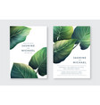 wedding cards with trppical leaves vector image