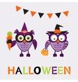 An of cute halloween owls vector image