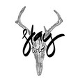 animal skull with hand drawn lettering vector image vector image