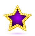 banner purple star frame vector image vector image