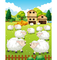 Lots of sheeps in the farm vector image vector image