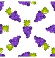 Purple grapes fruit seamless pattern vector image vector image