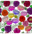 seamless dahlias background vector image vector image