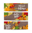 set three horizontal banners with autumn maple vector image vector image