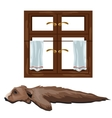 Skin of bear hunting trophy and window vector image vector image