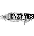 what on earth is an enzyme text word cloud concept vector image vector image
