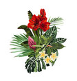 bright green summer tropical bouquet vector image vector image
