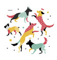 bright simple print of 5 dogs vector image vector image