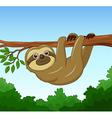 Cartoon happy sloth hanging on the tree vector image