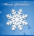 christmas background winter snowflake on greeting vector image vector image