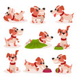funny jack russell terrier characters set cute vector image vector image