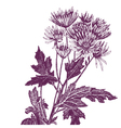 Pen and ink flower vector image
