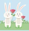 rabbits couple in garden vector image