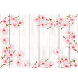 sakura japan cherry branch with a pink flowers on vector image vector image