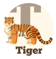 ABC Cartoon Tiger vector image vector image
