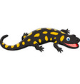cartoon happy salamander vector image vector image