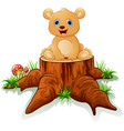 cute baby bear posing on tree stump vector image vector image