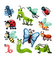 insects fly bugs nature wildlife beautiful vector image vector image