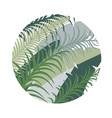 round tropical background with palm leaves image vector image vector image