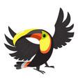 toucan macaw icon cartoon style vector image