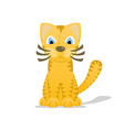 Cartoon tiger cat with shadow vector image