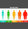 creative of bmi body mass vector image