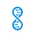 dna logo template isolated vector image vector image