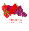 fruits food station fresh fruit background vector image vector image