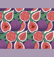 hand drawn figs fruit seamless pattern doodle vector image