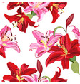 lily flower seamless pattern on white background vector image