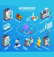 microbiology isometric flowchart vector image vector image