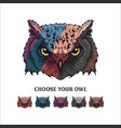 owl face vector image vector image