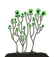 Plant logo vector image vector image