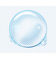 soap water bubbles transparent isolated realistic vector image